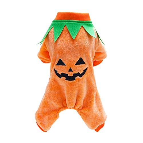 Dallas Cowboys Halloween Pumpkin (Pet Hoodies HCFKJ Halloween Pumpkin Cool Cute Dog Pet Cosplay Costume Coral Velvet Clothing S~XXL (XL))
