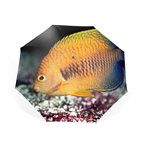 - Yellow Angel-fish Umbrella Automatic Open Close Folding Portable Golf Umbrellas with UV Coating