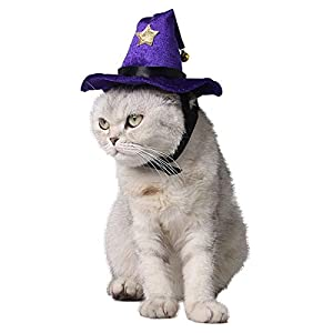 Homiego Halloween Cat Witch Hat Pet Wizard Headwear Cats & Small Dogs Party Costume Free Size