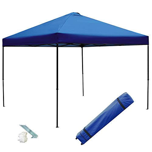 Blissun 10 x 10 Ft Outdoor Portable Instant Pop-Up Canopy