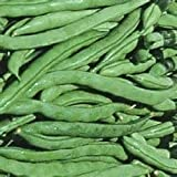 Juju's Garden Green Beans (Kentucky Wonder)-50 Seeds
