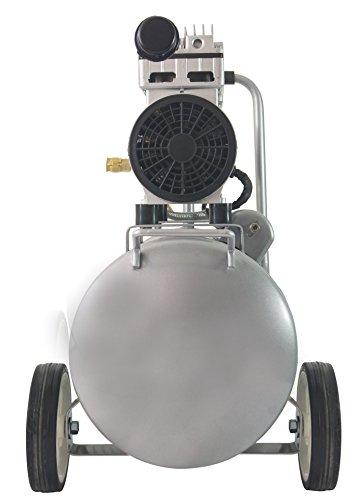 California Ultra Quiet Oil-Free 1.0 hp Steel Air