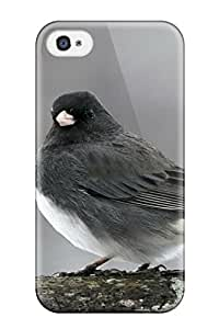 Cheap sparrow Animals Lifestyle belkin iPhone 4/4scases 8382456K259433613