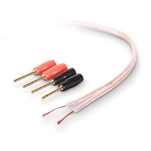 Belkin PureAV AV23002-100 100-Foot 18-Gauge Speaker Cable and - Gauge Series Speaker 18 Blue