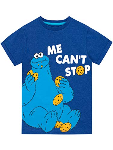Sesame Street Boys' Cookie Monster T-Shirt Size 6 Blue