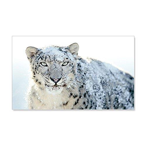 20 x 12 Wall Vinyl Sticker Snow Leopard HD (Leopard Apple Tiger)