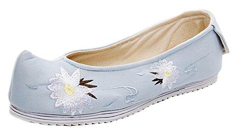 Avacostume Womens Begonia Flower Embroidery Scarpe Da Ballo Casual Blu