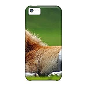 Sanp On Case Cover Protector For Iphone 5c (baby Horse)
