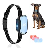 Dog Shock Collar for Medium Dogs - Rechargeable Dog Training Collar, Humane Anti