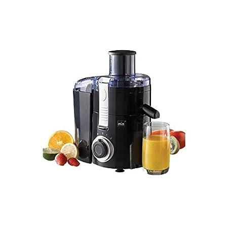 Licuadora Extractor de zumo dos velocidades: Amazon.es: Hogar