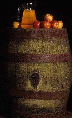 crafts-n-more-store Oak Barrel Cider Candle/Soap Fragrance Oil 1oz