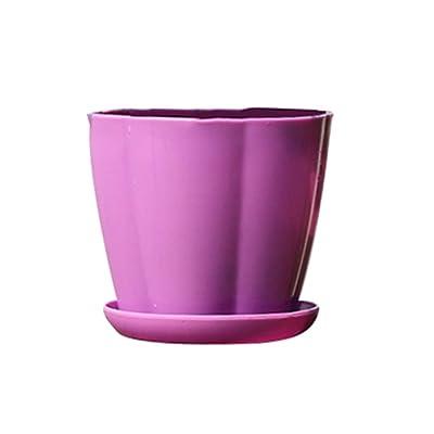 Garden Succulent Plant Ceramic Pots, Pumpkin Shape Plastic Imitation Porcelain Flower Pot Succulent Garden Planter - Purple M : Garden & Outdoor