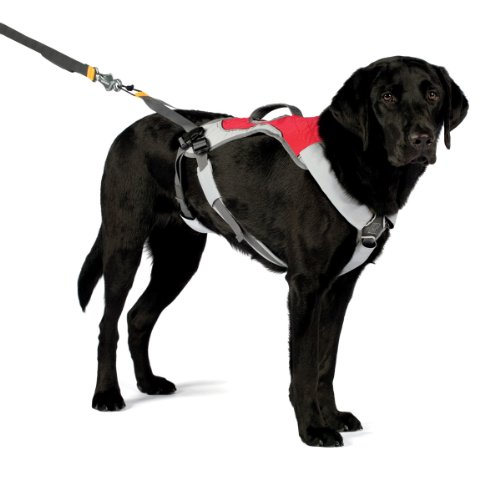 Ruffwear OmniJore Joring System, Large, Red Currant