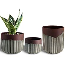 "Ceramic Orchid Flower Pot, Succulent Planters with Drainage Hole, Large Medium Small Retro Plant Pot for Indoor Outdoor, Set of 3 (Rusty Red, 5.1"" - 3.9"")"