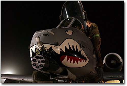 A-10 Thunderbolt Nose Art 8x12 Silver Halide Photo Print