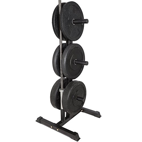 Titan Fitness Olympic 2\u2033 Weight Plate Rack ...  sc 1 st  Barbell Academy & Titan Fitness Olympic 2\u2033 Weight Plate Rack Tree \u0026 Barbell Holder ...