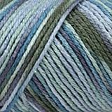 Bulk Buy: Caron Simply Soft Yarn Paints (2-pack) Spring Brook C9700P-004