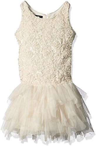 Price comparison product image Biscotti Little Girls' Toddler Filigree Splendor Drop Waist Dress, Ivory, 2T