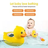 b&h Baby Thermometer, The Infant Baby Bath Floating