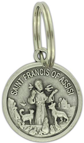 (Gifts Catholic, Inc. St. Francis of Assisi/Protect My Pet Medal - Large)