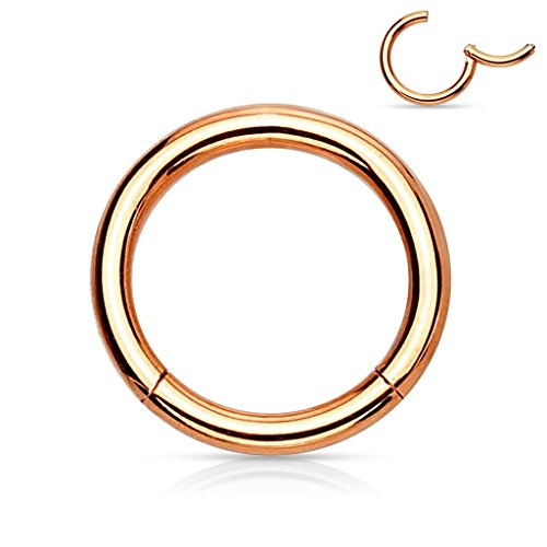 - Covet Jewelry Titanium Anodized Precision 316L Surgical Steel Hinged Segment Ring (16GA, Length: 6mm, Rose Gold)