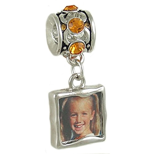 Bead Photo Charm Brown Crystal Silver-Tone fits European Bracelet