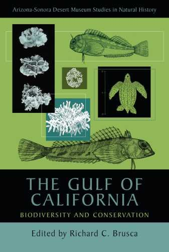 (The Gulf of California: Biodiversity and Conservation (Arizona-Sonora Desert Museum Studies in Natural History) )