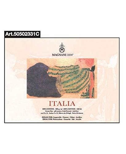 ITALIE 31 X 23 G. FINA 20FG 300