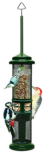 (Brome Bird Care BD1052 Squirrel Buster Peanut + (Set of 1))