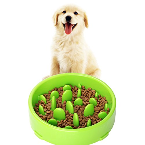 JASGOOD Pet Fun Feeder Dog Bowl Slow Feeder, Bloat Stop Diet Dog Food Bowl Maze Interactive Puzzle Non Skid Green Color