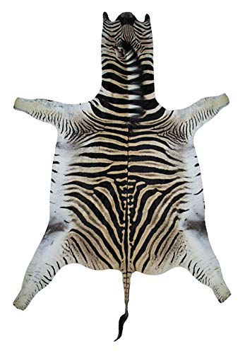 Burchell's Zebra Hide Rug for sale  Delivered anywhere in USA