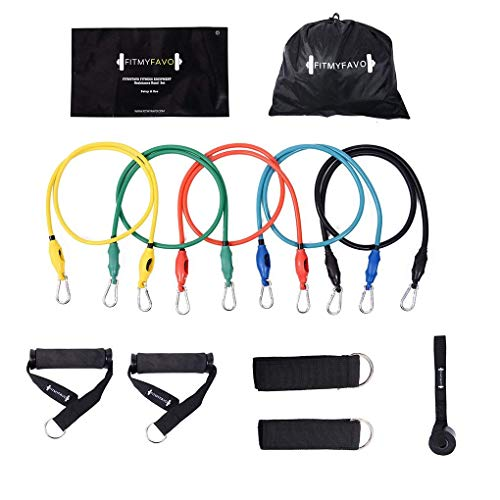 PIN JIAN Resistance Bands Set with Exercise Tube Bands, Door Anchor, Ankle Straps, Foam Handles, Exercise Guide & Carry Case – DiZiSports Store