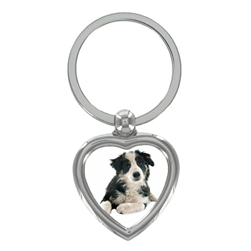 Black and White Border Collie Puppy Image Heart Shaped Keyring in Gift -