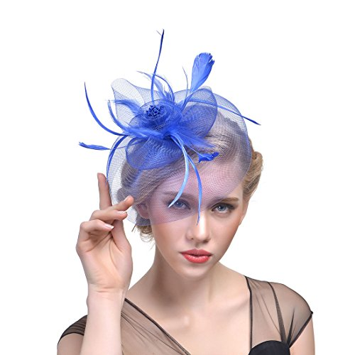 Zhisheng You Vintage Feather Flapper Headpiece Wedding 1920s Gatsby Headbands (Blue) by Zhisheng You