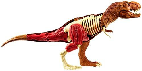 Jurassic World Stem Tyrannosaurus Rex Anatomy Kit by Jurassic World Toys (Image #6)