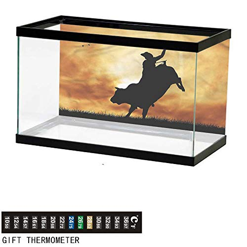 (Fish Tank Backdrop Western,Rider Silhouette Sunset,Aquarium Background,30