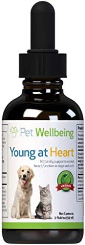 Pet Wellbeing Young at Heart for Dogs - Natural Support for Your Dogs Heart (2oz (59ml))