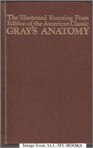 grays anatomy illustrations