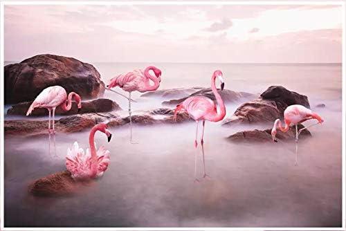 BHXINGMU Mural Mural En 3D Puesta De Sol Lago Flamenco Gran ...