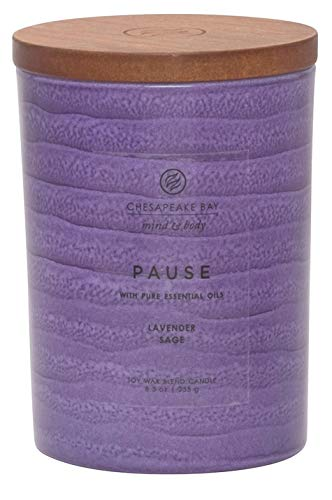Chesapeake Bay Candle Mind & Body Serenity Scented Candle, Pause with Pure Essential Oils (Lavender and Sage), -