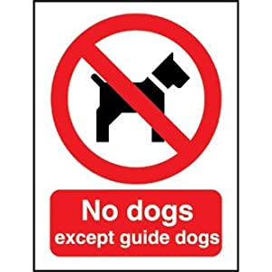 Pets And Food Are Not Allowed In The Store
