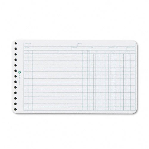 Wilson Jones Ring Ledger (Wilson Jones : Extra Sheets for 6-Ring Ledger Binder, 100/pack -:- Sold as 2 Packs of - 100 - / - Total of 200 Each)