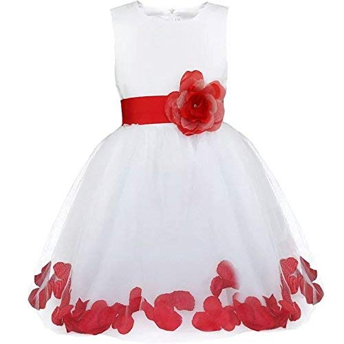2b9d753707c AP Boutique Baby Girl's Satin Birthday Dress (AP1001, Red and White, 18-