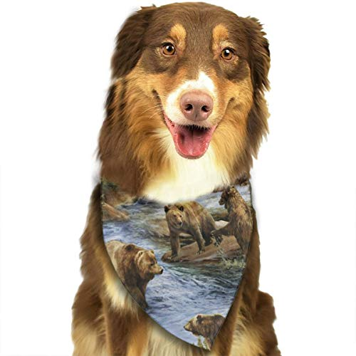 - FRTSFLEE Dog Bandana New Brown Grizzly Bears Wildlife Scarves Accessories Decoration for Pet Cats and Puppies