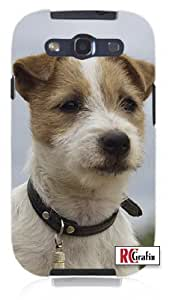 Cool Painting Stout ; Serious Jack Russell Puppy Dog - Very Smart Unique Quality Soft Rubber Case for Samsung Galaxy S4 I9500 - White Case