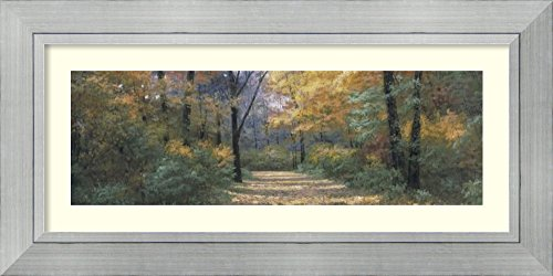 Framed Art Print 'Autumn Road Panel' by Diane - Woodlands Lake Drive
