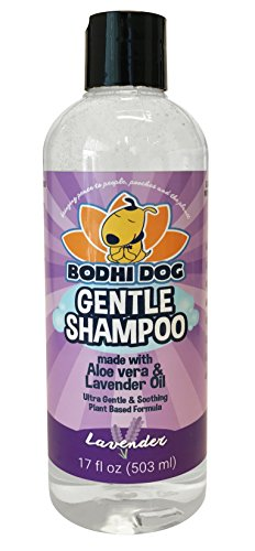 Bodhi Dog Shampoo- Best Dog Shampoo