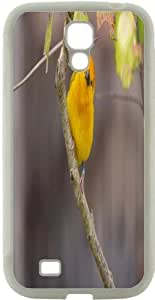 Blueberry Design Galaxy S4 Case Yellow Parrot on a branch Design