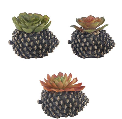 (Flora Bunda Artificial Plants Cactus Set of 3 Mid Century Faux Succulent in Cement Pinecone Pot)