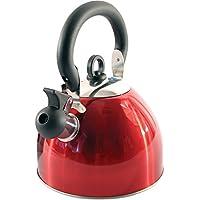 Bouilloire sifflante - En acier inoxydable - 2,5 l - Légère